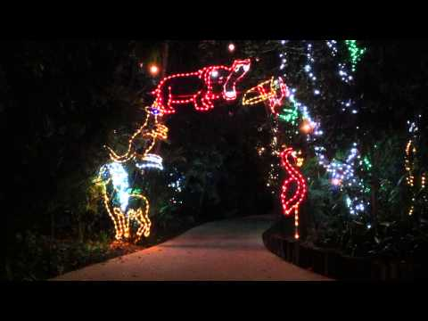 2014 Jungle Island Winter Wonderland