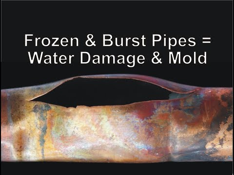 Frozen & Burst Pipes = Water Damage & Mold by IndoorDoctor
