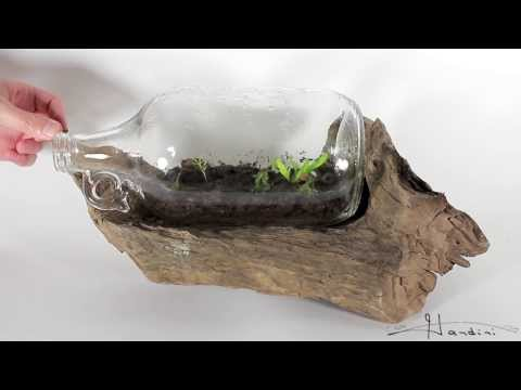 How To Make A Terrarium In A Bottle