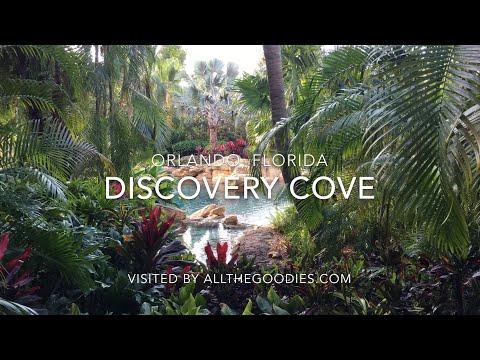 Discovery Cove 2018, Orlando 4K