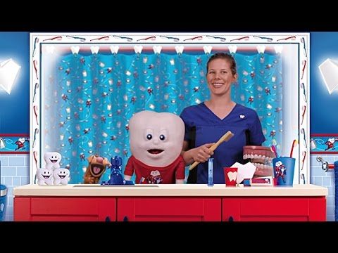 Hey Kids! Learn How To Brush Your Teeth Properly With Baby Tooth & Make the Tooth Fairy Happy!