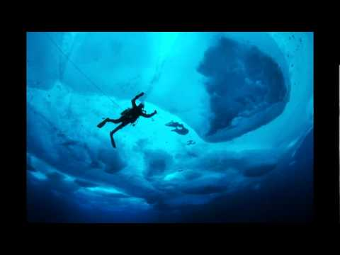Tales of ice-bound wonderlands | Paul Nicklen