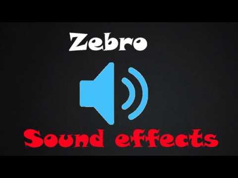 Flipagram Roasting Sound Effect!!!