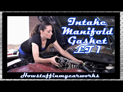 Pretty Girl replaces Intake Manifold Gasket on LT1 Engine Firebird Trans Am