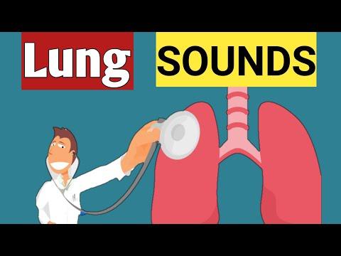 Breath Sound or Lung sound , Pattern to Auscultate Breath sound & Normal V/S Abnormal Breath Sound.