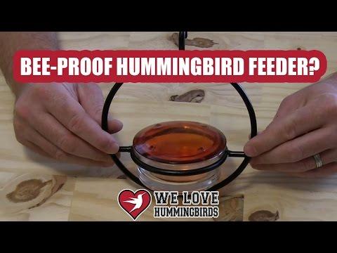 Best Bee Proof Hummingbird Feeder Ever?
