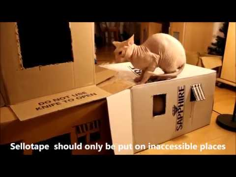 DIY Simple Cathouse Craft using Cardboard boxes