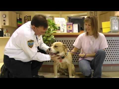 2015 Dog License Commercial - Montgomery County Bark Park