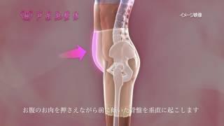 <芦屋美整体> 新しい骨盤スッキリショーツは引き上げる新感覚骨盤補整。 締め付けずに心地よく下半身全体をサポートします。
