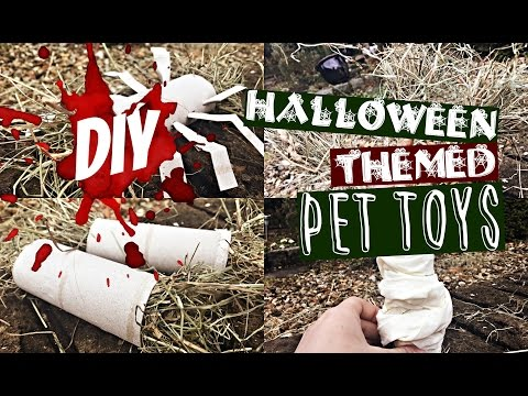 DIY: Halloween-Themed Pet Toys! | RosieBunneh