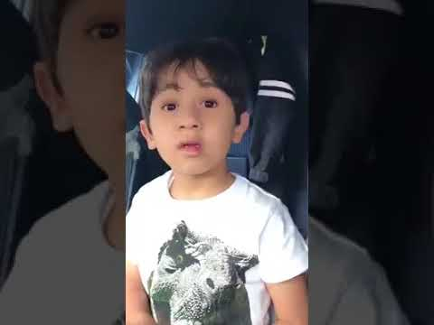 5 Year Old Kid Knows How To Fly an Airplane!