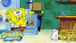 SpongeBob Adopts a Sea Bunny! 🐰 EXCLUSIVE Sneak Peek | SpongeBob SquarePants | Nick