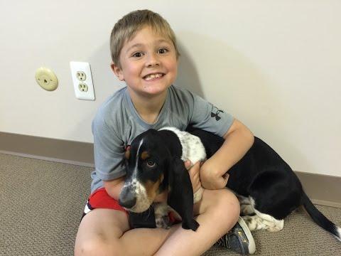 Vito the kid gets a Basset Hound Puppy