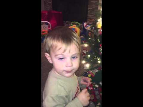 The Grinch on the Christmas Tree- Trevor