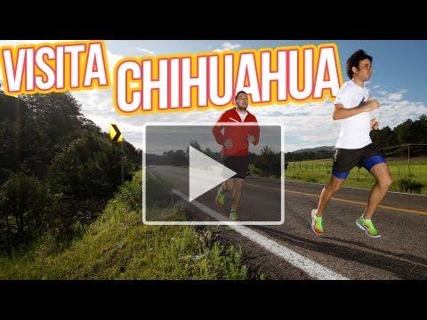 TE INVITO A: CHIHUAHUA ◀︎▶︎WEREVERTUMORRO◀︎▶︎