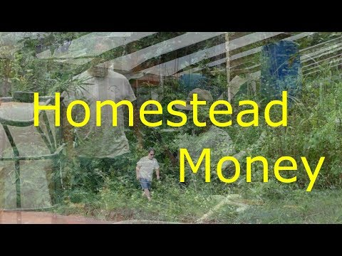 How I Make Money On My Homestead - Tips and Tags