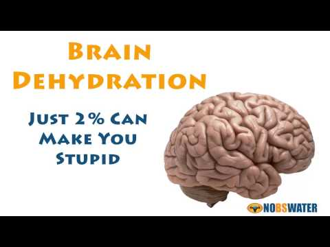 Brain Dehydration - Just 2% Can Make You Stupid