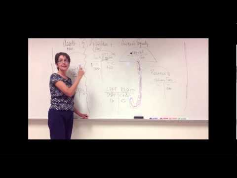 Accounting - Introduction of Debits and Credits, Part 2