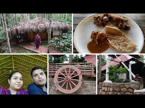 Chikmagalur forest homestay Day 2 with Budget