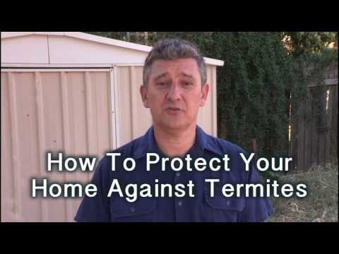 Protect Your Home Against Termites - How To DIY TV