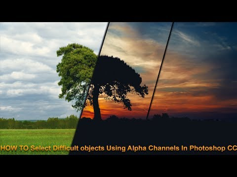 Making Difficult Selections Like Trees Using Alpha Channel In Photoshop