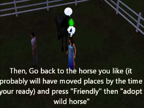 How to adopt a wild horse - the sims 3 pets