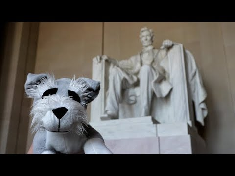 Ferguson Goes to D.C.
