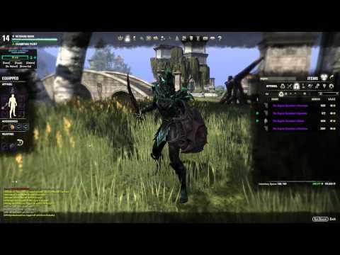 [Build Update] Heavy Magicka Templar!