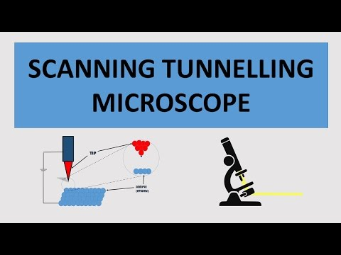 The Scanning Tunnelling Microscope : How it Works and Its Applications