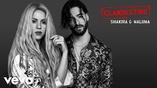 Shakira, Maluma - Clandestino (Audio Oficial)
