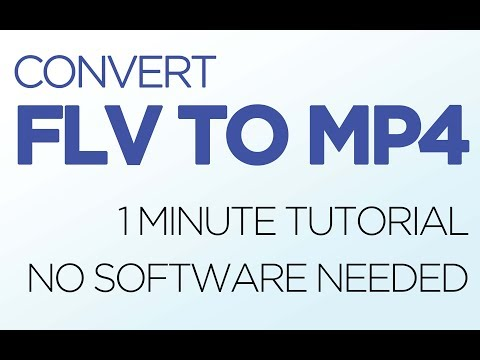 How to Convert FLV video into MP4 (EASY, NO DOWNLOADS)