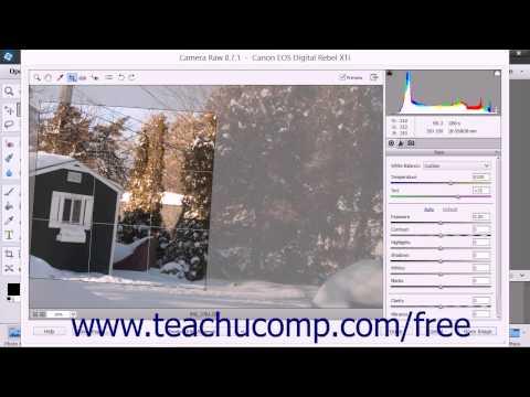 Photoshop Elements 13 Tutorial Camara Raw Tools Adobe Training