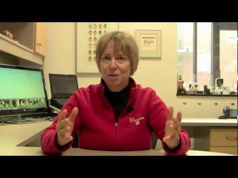 Managing Mastitis: The Pathogen Series, Episode II: Staphylococcus aureus