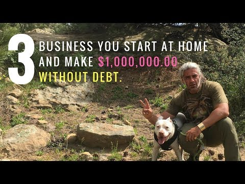 3 business you start with $100 and without Debt to profits $1,000,000.00
