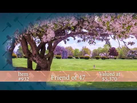2018 Auction #BB932: Swan Lake Memory Gardens  Plots