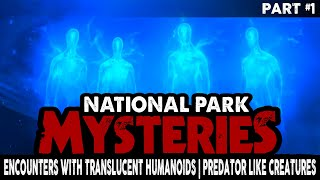 Strange Stories of Encounters with Translucent Humanoids   Predator Like Creatures in the Woods