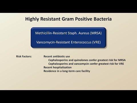 Antibiotics for Gram Positive Infections (Antibiotics - Lecture 4)