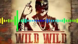 Chronic Law - Wild Wild West (January 2019)
