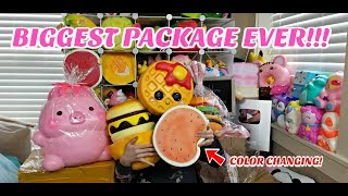 Download BIGGEST SQUISHY PACKAGE EVER!!! BANGGOOD, CREAMIICANDY AND CYNDERCAKE415 Video