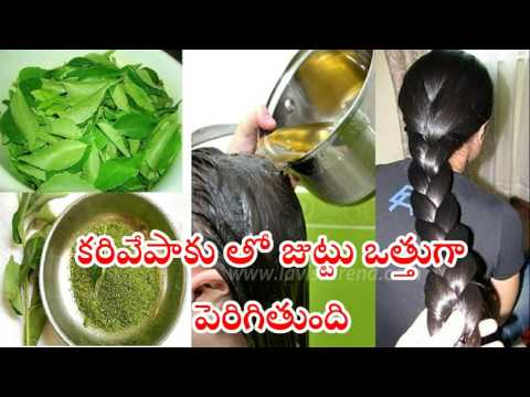 Grow Thick hair using Curry Leaves in telugu.