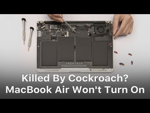 MacBook Air Won't Turn On Troubleshooting - Killed By Cockroach?
