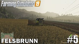 HARVESTING SUGAR BEETS  Felsbrunn   Timelapse #4   Farming Simulator