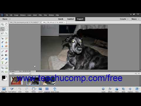 Photoshop Elements 2019 Tutorial The Expert Edit Mode Environment Adobe Training