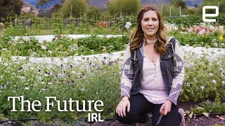 The farming robots of tomorrow are here today   The Future IRL