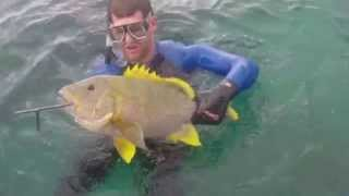 Spearfishing North Queensland Vol Pt 2