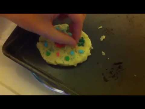 Biology Project: how to make a cell cookie with candy organelles
