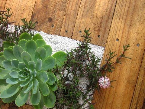 Build a DIY Pallet Bench with Micro Garden