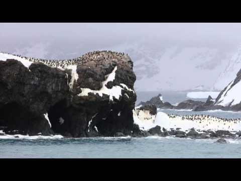 Elephant Island in the South Shetland Islands of Antarctica