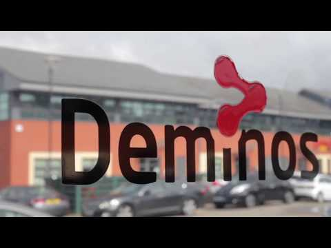 Deminos - Meet the Team