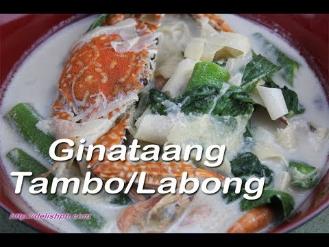 Ginataang Tambo/Labong (Bamboo Shoots in Coconut milk)